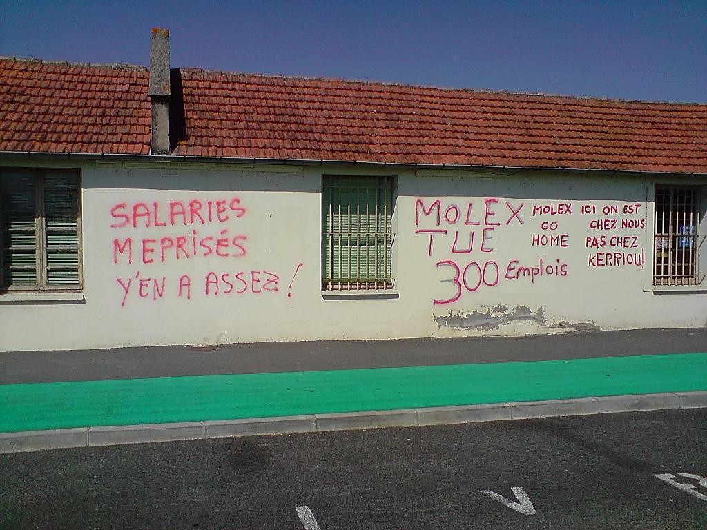 mur0003.jpg